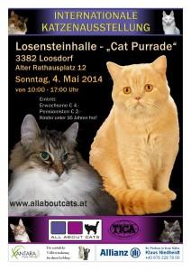 Show Plakat Loosdorf